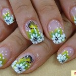 unhas-decoradas-fotos